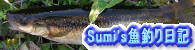 Sumi's魚釣り日記